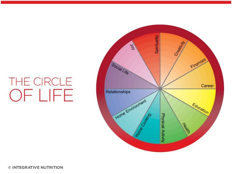 IIN Circle of Life